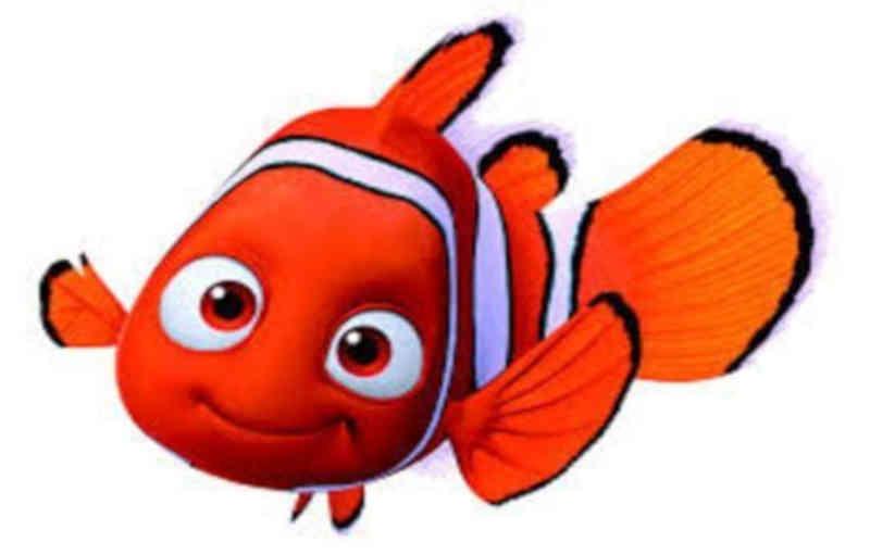 Frases do Filme Procurando Nemo