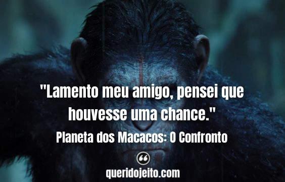 Frases Planeta dos Macacos: O Confronto, Legendas Planeta dos Macacos: O Confronto, Frases do segundo Planeta dos Macacos, Frases Malcolm, Frases Koba