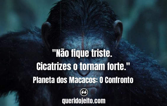 Frases Planeta dos Macacos: O Confronto tumblr, Status Planeta dos Macacos: O Confronto, Frases Elmira, Frases Dreyfus,
