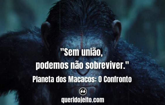 Frases Planeta dos Macacos: O Confronto facebook, Frases Dawn of the Planet of the Apes, Frases Alexander, Frases César, Frases Cornelia,