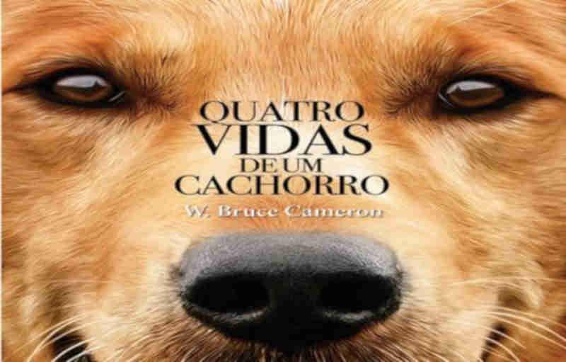 Frases do Livro Quatro Vidas de Um Cachorro