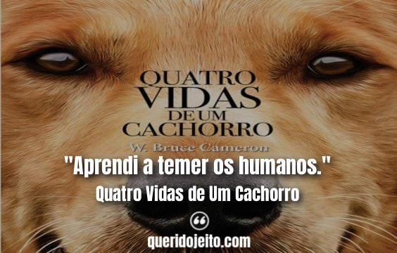 Frases Livro Quatro Vidas de Um Cachorro tumblr, Pensamentos Quatro Vidas de Um Cachorro Livro, Livro Frases 4 Vidas de Um Cachorro, Frases de Cachorros, Frases de Livros,