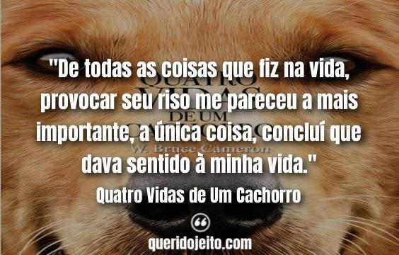 Frases Livro Quatro Vidas de Um Cachorro facebook, Mensagens Quatro Vidas de Um Cachorro Livro,