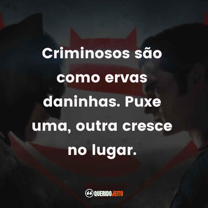 """""""Criminosos são como ervas daninhas. Puxe uma, outra cresce no lugar."""" Batman Vs Superman Frases tumblr"""