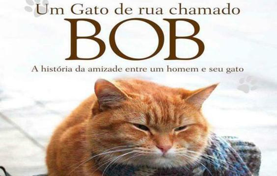 Frases do Livro Um Gato de Rua Chamado Bob