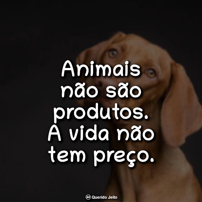 Animais não são produtos. A vida não tem preço. Frases Sobre Veganismo