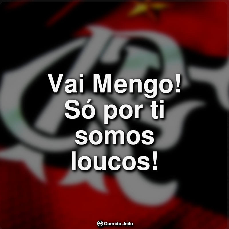 Frases do Flamengo: Vai Mengo só por.