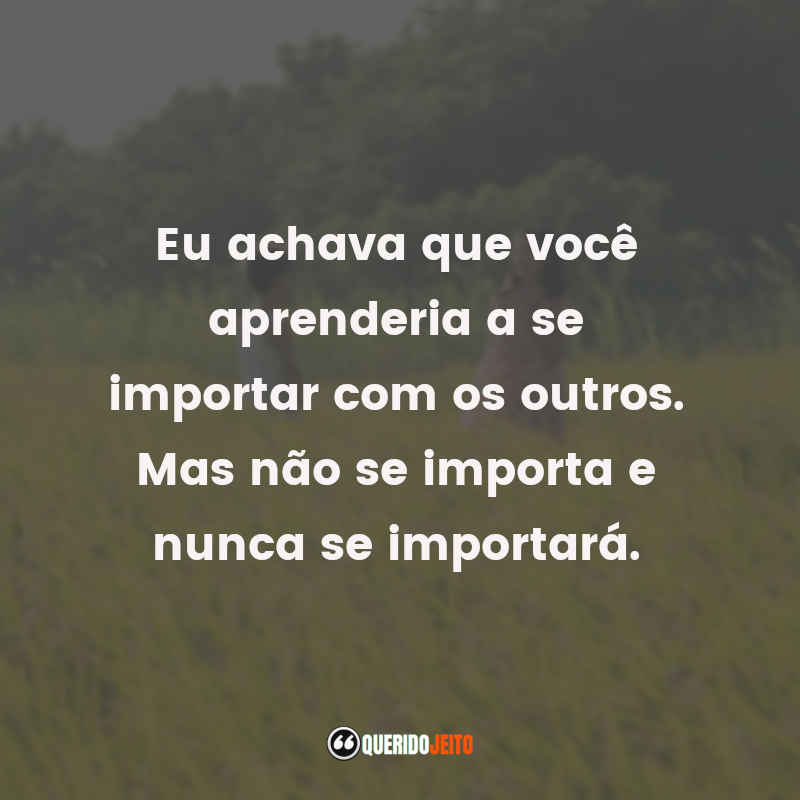 Frases Tigertail tumblr