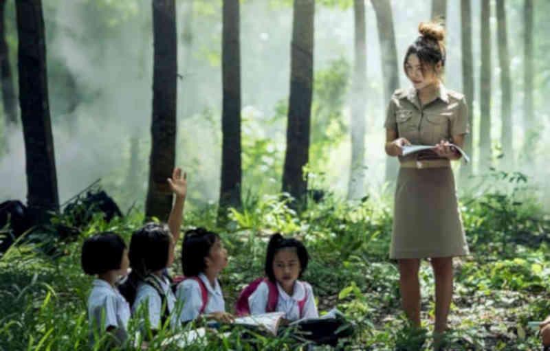 Frases para o Dia do Pedagogo
