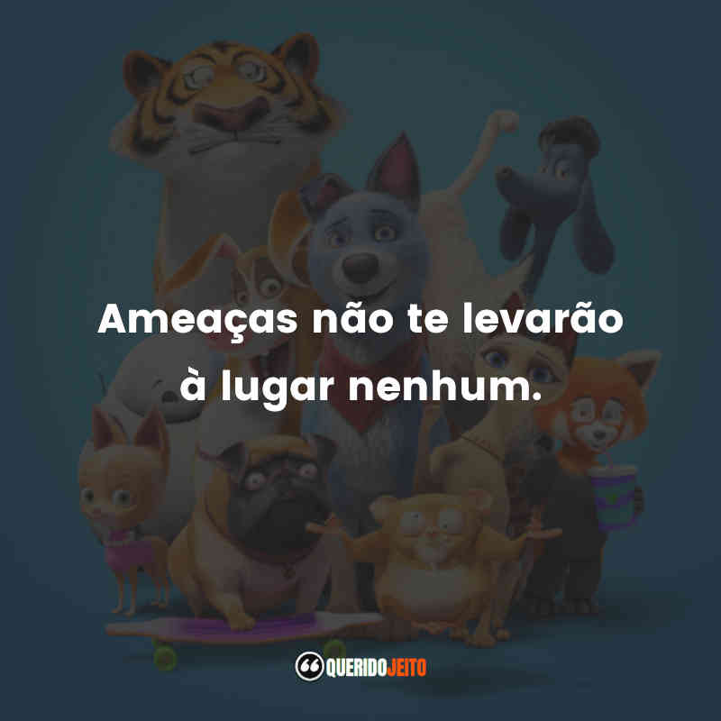 Frases Pets Unidos!