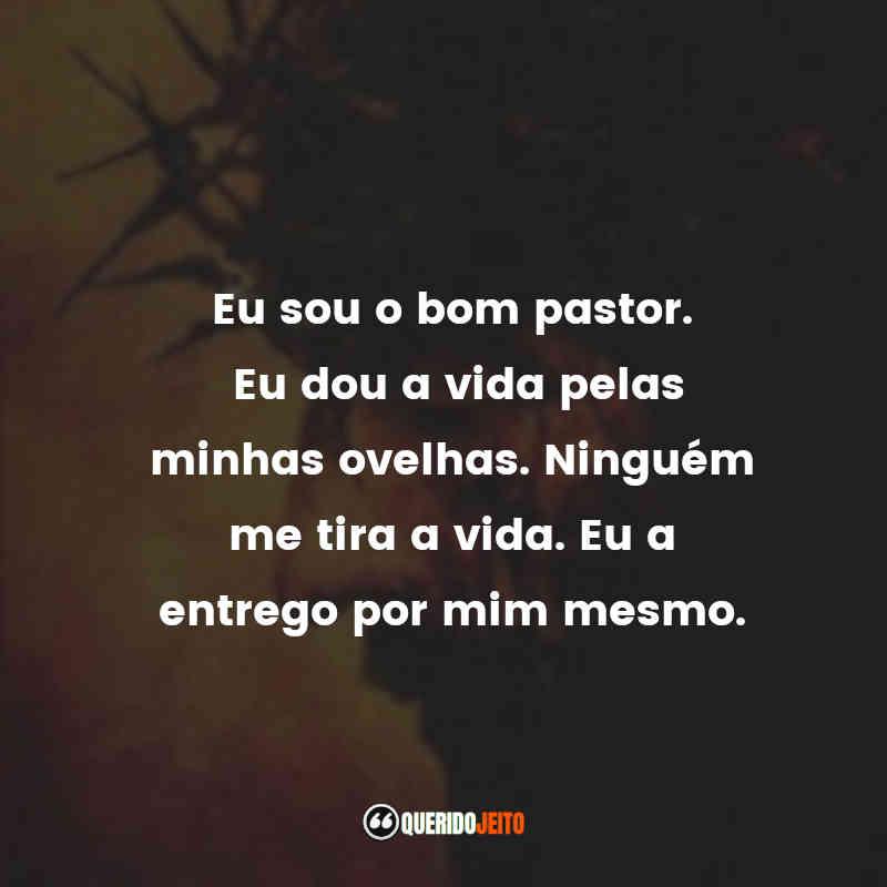 """""""Eu sou o bom pastor. Eu dou a vida pelas minhas ovelhas. Ninguém me tira a vida. Eu a entrego por mim mesmo."""" Frases A Paixão de Cristo"""